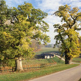 Strada e ponticello nel parkland inglese Fotografia Stock
