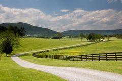 Strada e rete fissa del ranch della Virginia Fotografia Stock Libera da Diritti