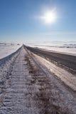 Strada ed alberi di inverno sotto neve in Altai Fotografia Stock