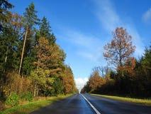 Strada ed alberi variopinti di autunno, Lituania Immagine Stock