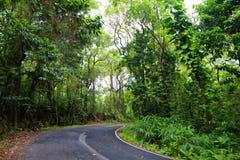 Strada famosa a Hana carica di ponti stretti del un-vicolo, di giri della forcella e di viste incredibili dell'isola, Maui, Hawai Immagini Stock Libere da Diritti