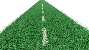 Strada fatta di erba Immagine Stock