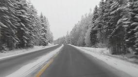 Strada finlandese di inverno video d archivio
