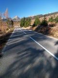 Strada in foresta che conduce ad alto Tatras Fotografia Stock