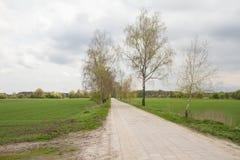 Strada fra i campi Immagine Stock