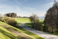 Strada fra i pascoli in Svizzera Immagini Stock