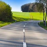 Strada fra i pascoli in Svizzera Fotografia Stock