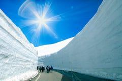 Strada fra la parete della neve dell'itinerario alpino di Tateyama Kurobe o il Giappone Fotografia Stock Libera da Diritti