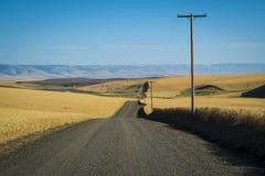 Strada, giacimenti di grano, Washington State fotografia stock