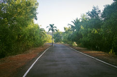 Strada in Goa India al giorno soleggiato Fotografie Stock Libere da Diritti