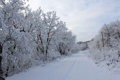 Strada innevata con il singolo fascio di binari in Manitoba fotografie stock libere da diritti