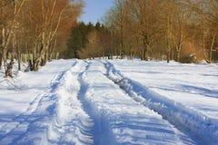 Strada invernale Fotografia Stock Libera da Diritti