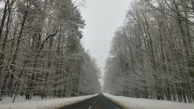 Strada in inverno Immagine Stock Libera da Diritti
