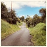 Strada in Kula su Maui in Hawai immagine stock