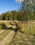 Strada in legno di autunno Fotografia Stock Libera da Diritti