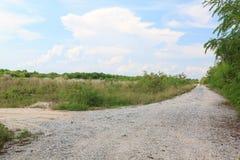 Strada locale attraverso i campi verdi con le nuvole ed il cielo, Tailandia Fotografie Stock