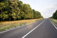 Strada locale attraverso la foresta Immagini Stock Libere da Diritti