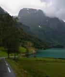 Strada lungo il litorale del fiordo Fotografie Stock Libere da Diritti
