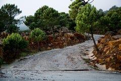 Strada in montagne Fotografia Stock