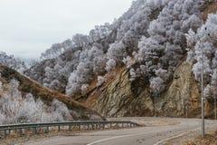 Strada in montagne di autunno Fotografia Stock Libera da Diritti