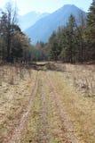 Strada in montagne di Caucaso Immagine Stock