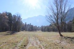 Strada in montagne di Caucaso Fotografie Stock Libere da Diritti