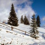 Strada in montagne di inverno fotografie stock