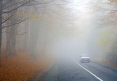 Strada nebbiosa Fotografia Stock