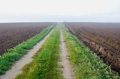 Strada nebbiosa di autunno nel campo arato dell'azienda agricola Fotografie Stock