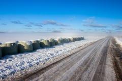 Strada nebbiosa di inverno Immagine Stock Libera da Diritti