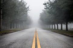Strada nebbiosa di mattina Immagine Stock Libera da Diritti