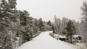 Strada nebbiosa ed il ponte Immagini Stock