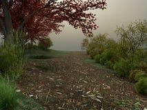Strada nebbiosa nel parco Fotografia Stock