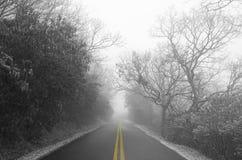 Strada nebbiosa nell'inverno Fotografie Stock