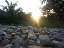 Strada nel Borneo Immagine Stock