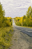 Strada nel boschetto di woods fotografia stock