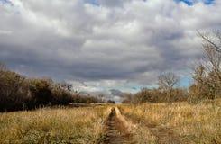 Strada nel campo di autunno Immagine Stock Libera da Diritti