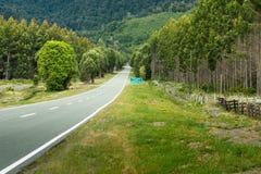 Strada nel Cile Fotografia Stock