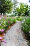 Strada nel giardino Immagini Stock Libere da Diritti