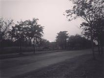 Strada nel giardino Fotografia Stock