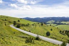 Strada nel Pieniny slovacco, Slovacchia della montagna Immagine Stock