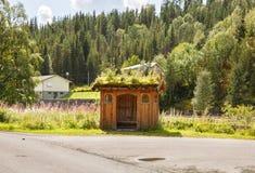 Strada nel villaggio della Norvegia Immagine Stock