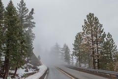 Strada nella cresta NationalForest di Angeles fotografie stock libere da diritti