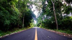 Strada nella foresta Fotografie Stock