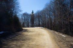 Strada nella foresta della montagna Fotografia Stock