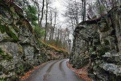 Strada nella foresta vicino al castello di Hohenschwangau in Germania Immagini Stock