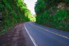 Strada nella giungla della montagna Immagini Stock