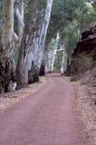 Strada nella libbra di Wilpena dalla località di soggiorno, SA, Australia fotografie stock libere da diritti