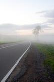 Strada nella nebbia Fotografia Stock