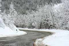Strada nella neve Fotografia Stock
